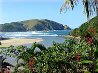 Second Beach - our famous swimming beach which is a few kilometers from the Glass House - click to enlarge